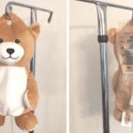 Geniaal bedacht door dit 12-jarige meisje: Infuus verbergen in teddybeer om kleine patiënten te kalmeren!